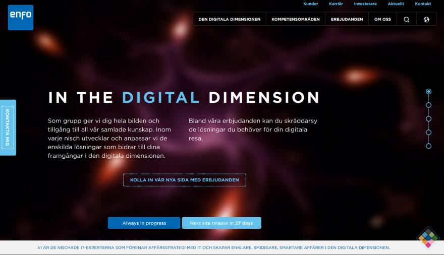 Enfo webmaster